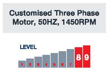 JetMaster Customised Thre Phase Motor 50Hz