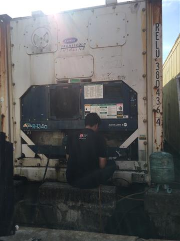 Reefer Container Service